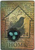 Bird Home 5.31.09